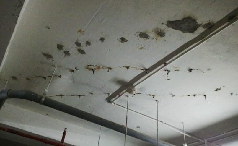 cách chống thấm trần nhà