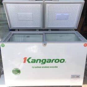 Dịch Vụ Sửa Tủ Đông Kangaroo – Thợ Sửa Tủ Đông Kangaroo Giá Rẻ
